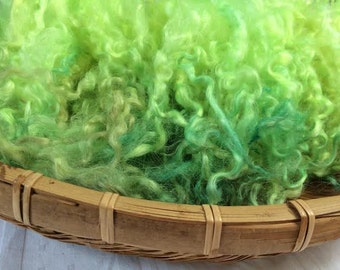 Hand Dyed British Teeswater Wool locks, 60gms for Waldorf Dolls, Art Dolls, Blythe Dolls, Spinning and Felt Making 'Sonic Green' Colourway