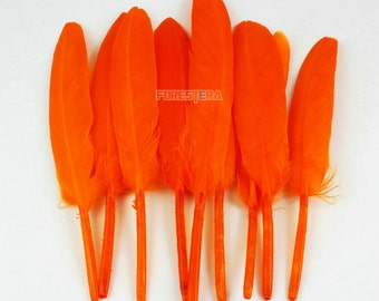 50 Pieces Orange Feather 9-15cm (YM139)