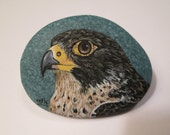 Peregrine Falcon hand painted on a rock by Ann Kelly