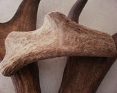 1 natural elk antler piece dog chew treat pet food bone toy handle crafts decor design real organic display
