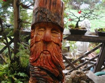 Eli,   the pine knot wood spirit