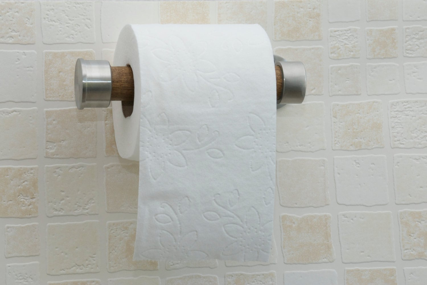 Brushed Stainless Steel And Poplar Toilet Paper Holder