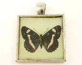 Butterfly Pendant - Brown White Green Square Resin Silver Pendant Nature Insect Jewelry Charm