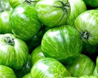 TOMATO - GREEN ZEBRA -  Heirloom - no gmo  25 Seeds