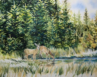 Watercolor ORIGINAL -Energy Drink- deer forest lake evergreen trees woods