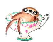 Teacup Sloth