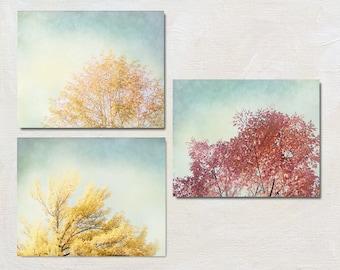 Fall Tree Wall Art Set, Three Nature Photograph Set, Yellow and Blue Art Set, Livingroom Decor, Tree Top Picture, Grey and Gold Photo Set