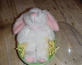 Plush Personalized Bunny Nestled in an Easter Egg