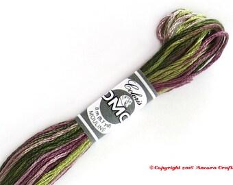 DMC 4505 Coloris Variegated 6 Strand Floss Bruyere (Heather)