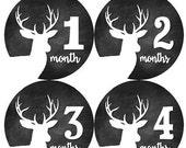 ON SALE Baby Monthly Milestone Growth Stickers Chalkboard Deer Antler Woodland MS834 Baby Boy Girl Shower Gift Nursery Photo Prop Hunting
