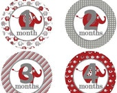 ON SALE Baby Monthly Milestone Growth Stickers Red Grey White Elephant Nursery Theme MS206 Baby Boy Girl Shower Gift Baby Photo Prop