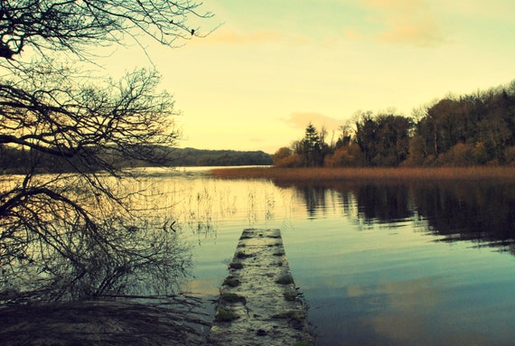 "18"" x 12"" Irish Portrait Photograph of Lough Key forest park"