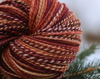 "Handspun Yarn Light Worsted Polwarth/Silk ""Autumn Equinox""--250 yds."