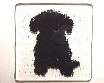 Fused Glass Dog Coaster