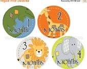 Sale Baby Monthly Stickers, Baby Shower Gift, Animals Safari Jungle, Baby Month Stickers Boys, Milestone Stickers, Boy Stickers, Month Stick