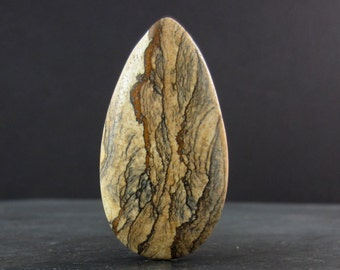Gorgeous picture jasper , Natural stone  B6028