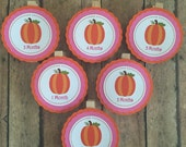 Sweet Little Pumpkin First Year Birthday Clips for Photo Banner