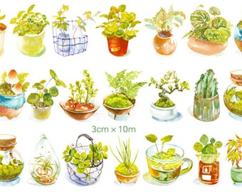 1 Roll of Limited Edition Japanese Washi tape- Little Plant