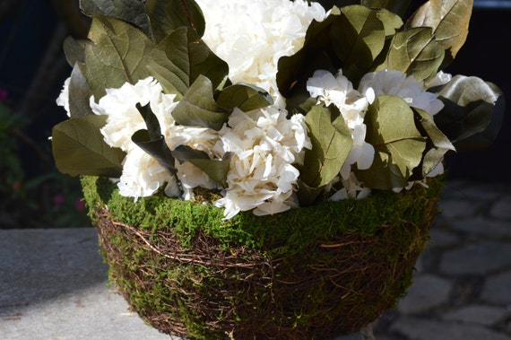 Items similar to dried hydrangeas flower