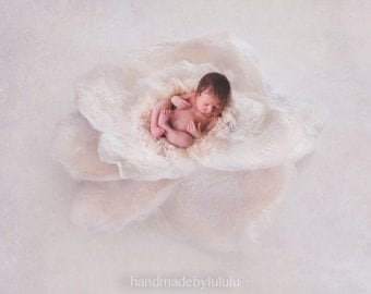 dreamy flower digital backdrop, digital photography prop, felted flower backdrop 4
