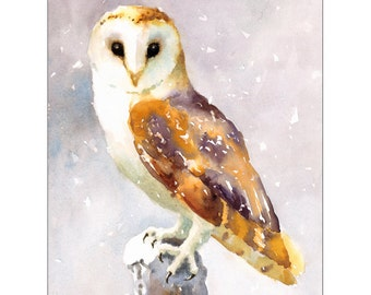 Barn Owl - Original Watercolor Painting 8x10 inches Bird Winter Snow