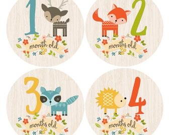 Baby Month Milestone Stickers Month by Month Newborn Monthly Sticker Boy Woodland Baby Shower Gift Baby Accessories Baby First Year
