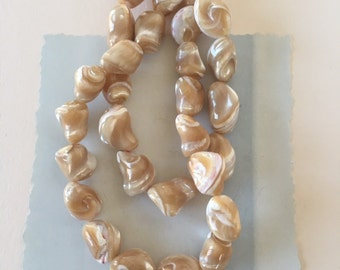 Mother of Pearl Beads, Trochus Shell Beads, 16mm, 12pcs