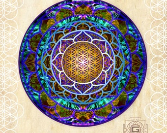 Lotus of life , Laptop /window Sticker , Sacred geometry ,  Transparent 12-18cm (5-7 inches) window sticker, merkaba , fridge sticker