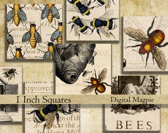 Bees 1 inch square digital download collage sheet inchies printable bee images instant download for pendants jewelry magnets bezel
