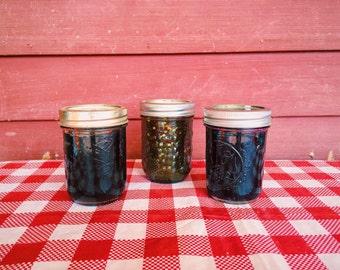 Maine Jam Sampler--Homemade Fruit and Pepper Jams