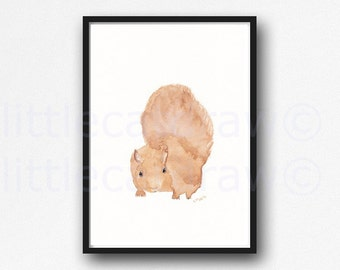Woodland Squirrel Watercolor Painting Print Squirrel Print Wall Art Littlecatdraw