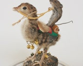 Taxidermy mouse riding baby turkey travelling gypsies