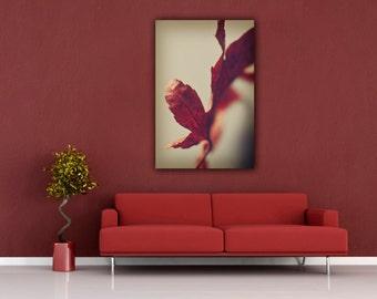 Leaf Photography, Minimalist Red and White Modern Still Life Autumn Photograph, Vertcal Wall Art Home Decor, Fine Art Nature PhotoPrints