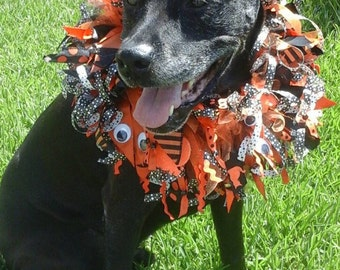 Fun Halloween dog collar!