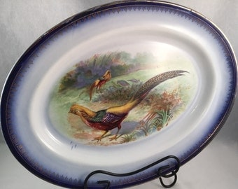 Large Vintage Imperial China Platter, Blue and Gold Boarder with Beautiful Pheasants Scenery
