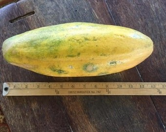Giant Maui Papaya SEEDS-organic Hana, MAUI, HAWAII grown-delicious tasting fruit-easy to grow tree-surprise samples added to every order