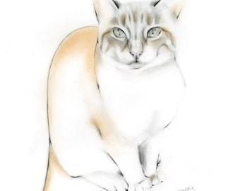 Custom art portrait of your pet