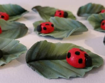 Fondant Lady Bug on Leaf Cupcake Toppers