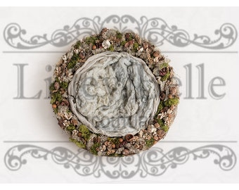 Beautiful Digital Newborn Photography Prop (Natural Moss Nest)