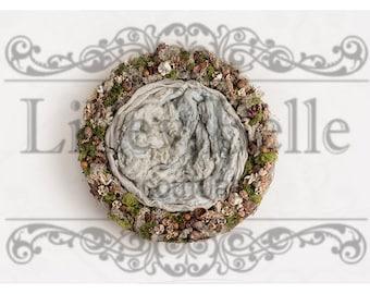 Digital prop/backdrop (Natural Moss Nest)