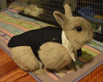 Bunny rabbit tuxedo