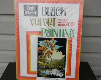 Vintage Rare Black Velvet #14202 Paint By Number Kit Summer Reflections Craftmaster dating back to 1970's Unused