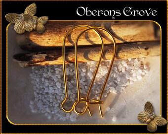 30 kidney earhooks gold