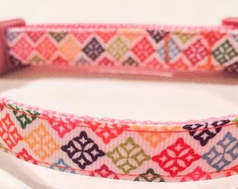 Colorful dog collar