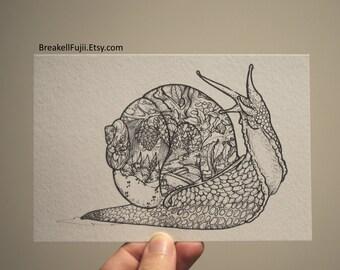 Snail Drawing, Snail Illustration, Snail Postcard, Black and White Snail, Detailed Snail, Snail Art, Snail Print, A6 Print, Adult Coloring