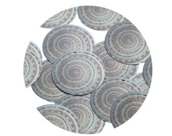 carbon dating snail shell Hovind, kent, nd doesn't carbon dating or potassium argon dating prove the earth is millions of years old.