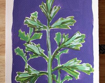 PARSLEY original herbal gouache painting 6x8