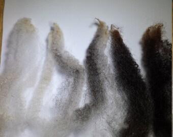 Raw Jacob Wool Fleece White Grey Brown