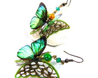 3D green butterfly earrings