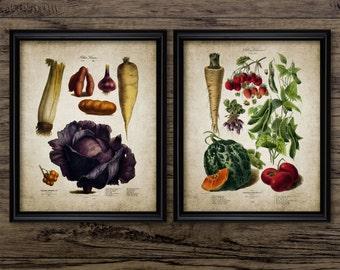 Vegetables Print Set Of 2 - Kitchen Vegetable Plant Illustration - Botanical Art - Kitchen Decor - Set Of Two Prints #2079 -INSTANT DOWNLOAD